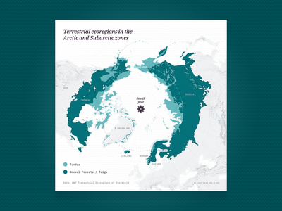 Terrestrial ecoregions in the Arctic and Subarctic zones arctic vector forest green data visualization maps design svg mapping cartography map ecoregion