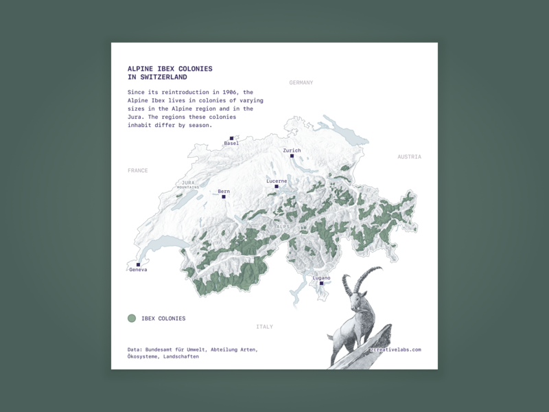 Distribution of Ibex colonies in Switzerland alpine data visualization illustration mapping svg design cartography green ibex map