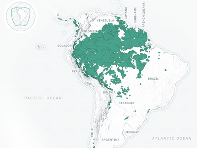 Intact Forest Landscapes in South America type vector geography forest green data visualization maps cartography mapping map svg design