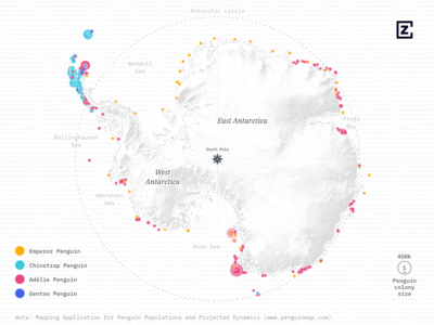 A map of more than 3600 penguin colonies in Antarctica d3 cartography grey pink blue antarctica animal antarctic dots map penguins penguin