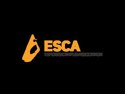 Esports Organization logo