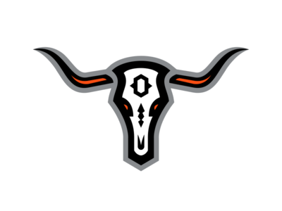 Denver Outlaws / Day 3 / August Rebranding Project