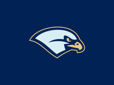 Bentley University Falcons / Day 8 / August Rebranding Project bird logo logo sports branding sports falcon bird bentley