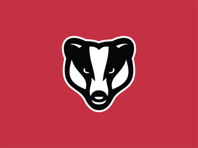 Brock Badgers / Day 16 / August Rebranding Project