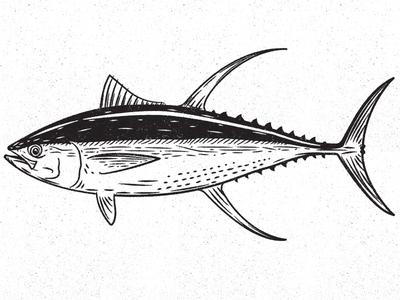 Tuna fishing design illustration fish tuna