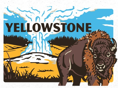 Yellowstone design illustration old faithful geyser buffalo park national yellowstone