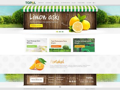web design orange green citrus lemon ui design web