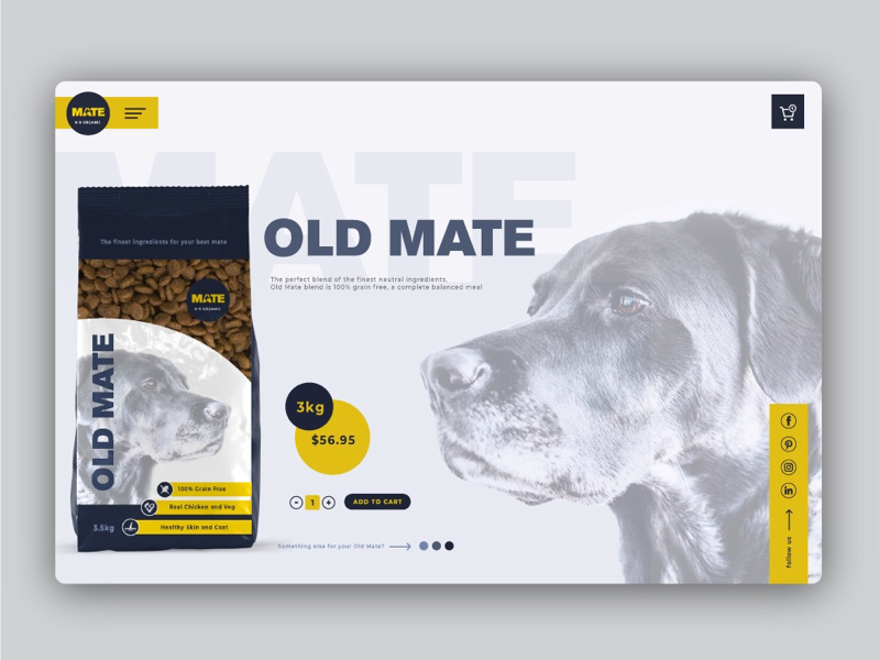 Product page & packaging photoshop illustrator strategy logo design brand web design product packaging pet food package design