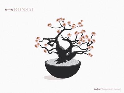 Azalea Bonsai flowers plants illustrator drawing vector illustration design tree indoor plant nature bonsai
