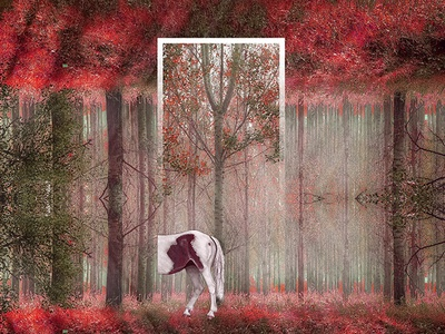 Surreal Life / Lost in Forest redisign sunrays branches leaves tree horse forest life surreal