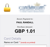 Mobile view of a adaptive online payment page for [REDACTED]