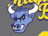 Raging Bull Softball Logo