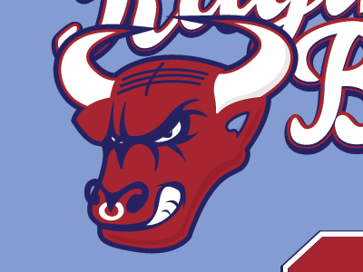 Raging Bull / Synergy Logo by Denise Salzman on Dribbble