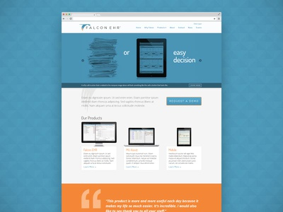 Falcon EHR Homepage Mockup website mockup homepage falcon medical webdesign web wireframe inspiration product