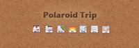 WIP Polaroid Trip