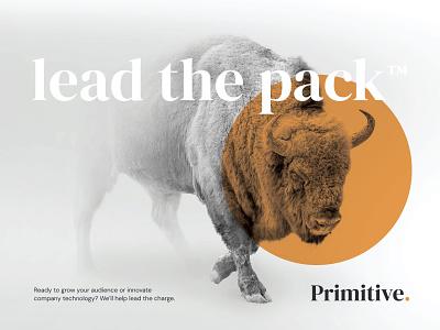 Primitive Ad branding circle buffalo agency