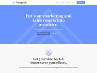 Tetrapeak Website ux website design branding agency consulting blue website