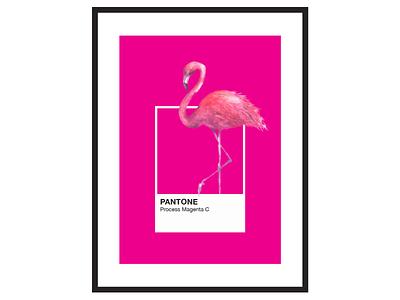 Pantone Flamingo Process Magenta C Art Poster poster pantone pink magenta art flamingo