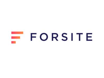 Forsite Big Data Analaytics -  Alphabet Logos 21/26