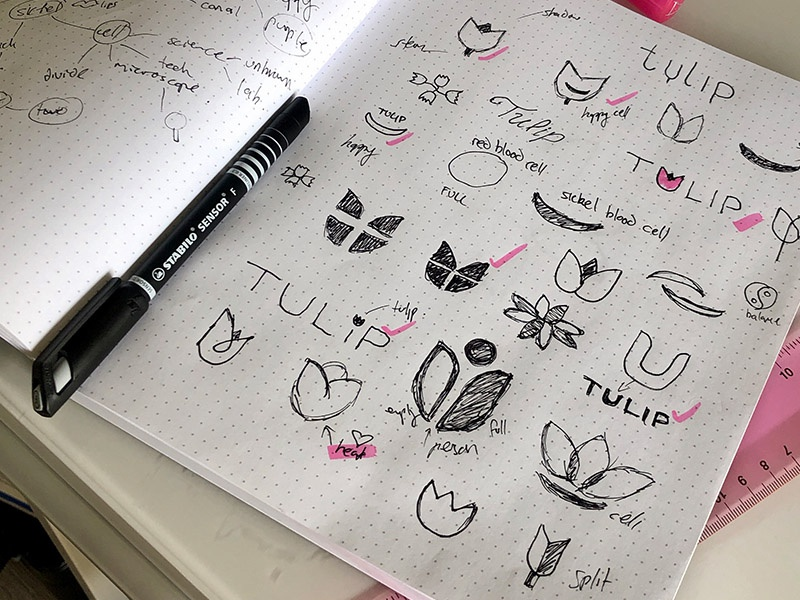 Tulip Logo Design Process Sketches logo sketch design process sketchbook branding logo design logo sketching process sketch