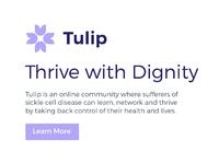 Tulip dribbble 07