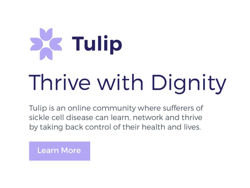 Tulip Typography typography art purple tulip button cta branding type typography