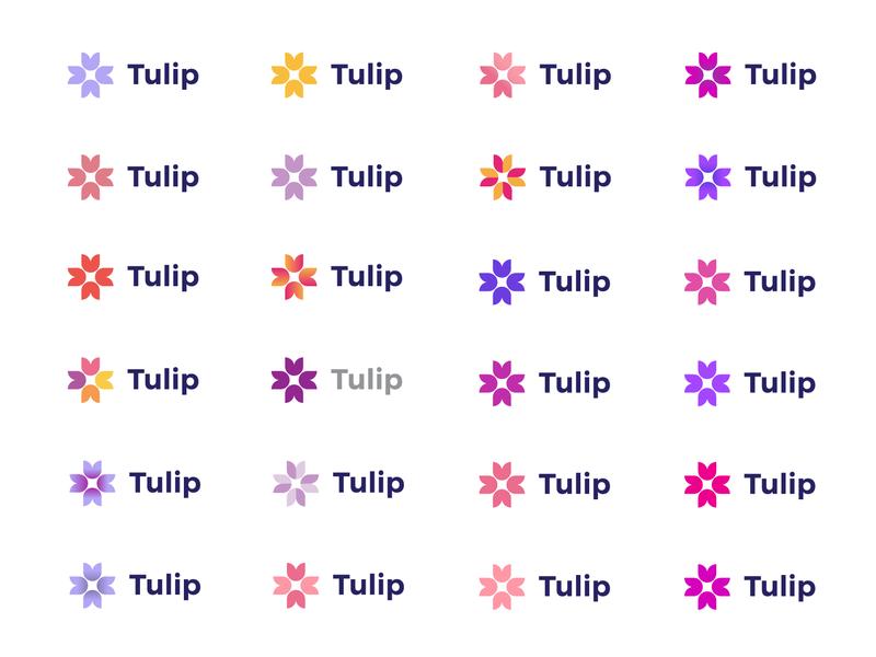 Tulip Color Exploration logo branding colors colour aid charity tulip flower color