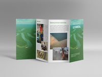 Leaflet | Discover Brazil & the Amazon
