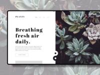 Plant Landing page Design