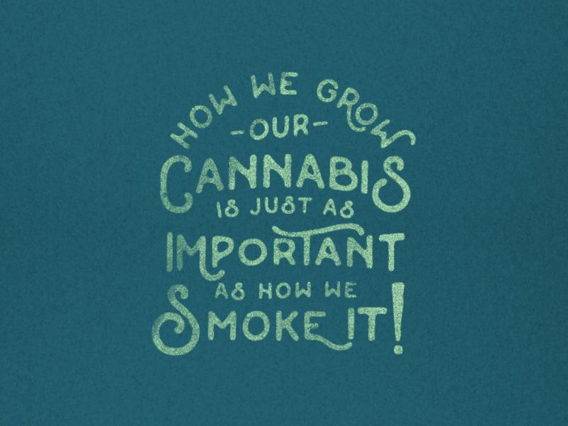 Bull Run Cannabis