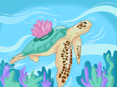 turtle Illustration design illustration