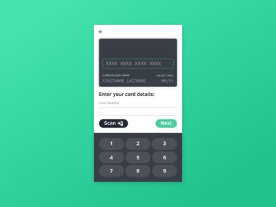 Credit Card Input Concept