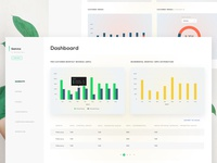Offer , Monthly revenue ,customer trends - Dashboard