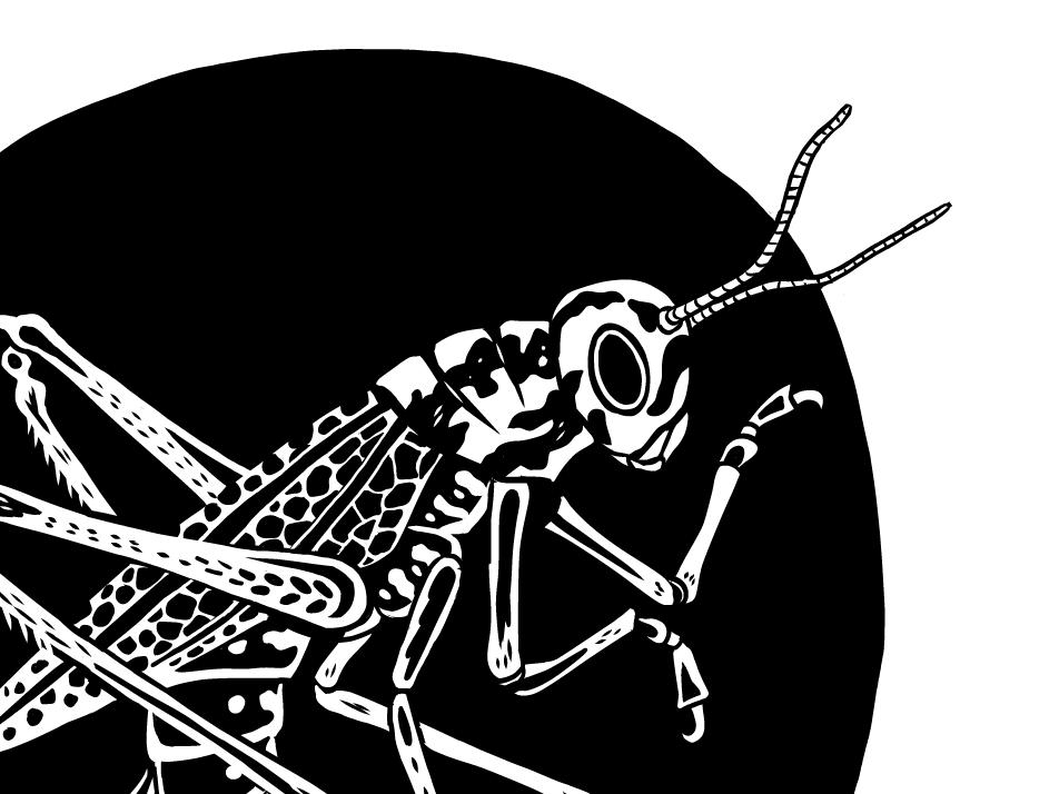 Inktober work - Pernicon bw manga studio illustration dnd inktober2018 inktober