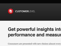 Customer Level