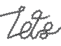 WIP bike chain type