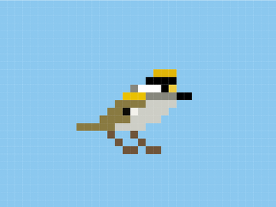 Regulus - the pixel bird bird nature pixelart pixels illustration