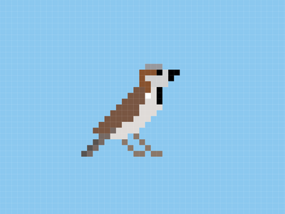 House sparrow - the pixel bird pixelart pixels nature illustration bird