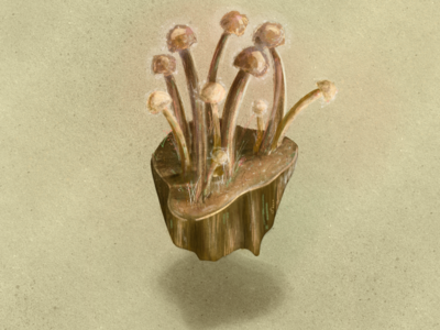 Mushroom Island watercolor ipad pro digital drawing drawing island mushrooms procreate