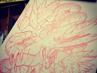 Phoenix2