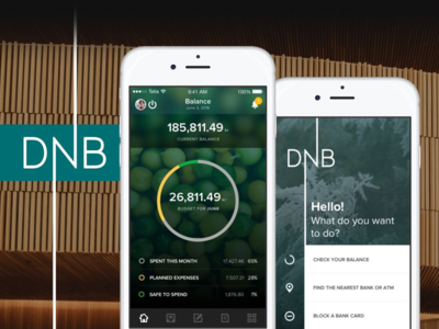 DNB Mobile banking experience ios norway dnb budget ux ui app application banking bank