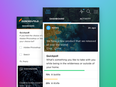 Questback Dashboard customization web app brand experience colorful