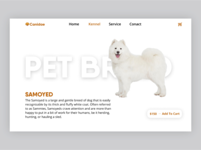 Pet Store Website