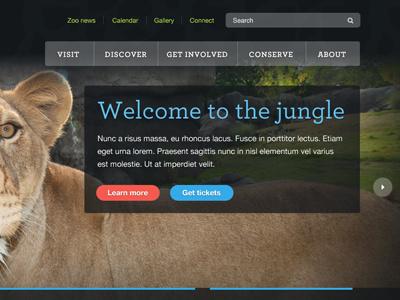 Zoo Banner animal cat dark colors