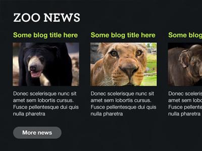 Zoo Blog typography animals dark columns