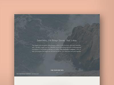 This Particular Company design website uxui