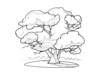 Maple tree process
