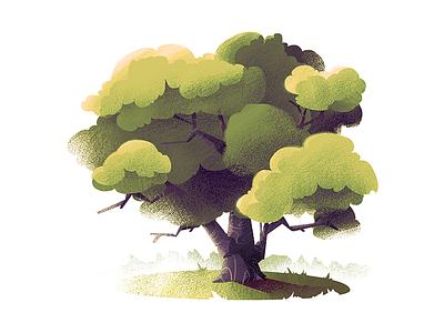 #6 Maple Tree nature maple tree illustration