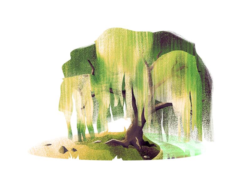 #7 Willow Tree natue tree illustration