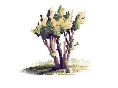 #8 Unknown Tree tree nature illustration